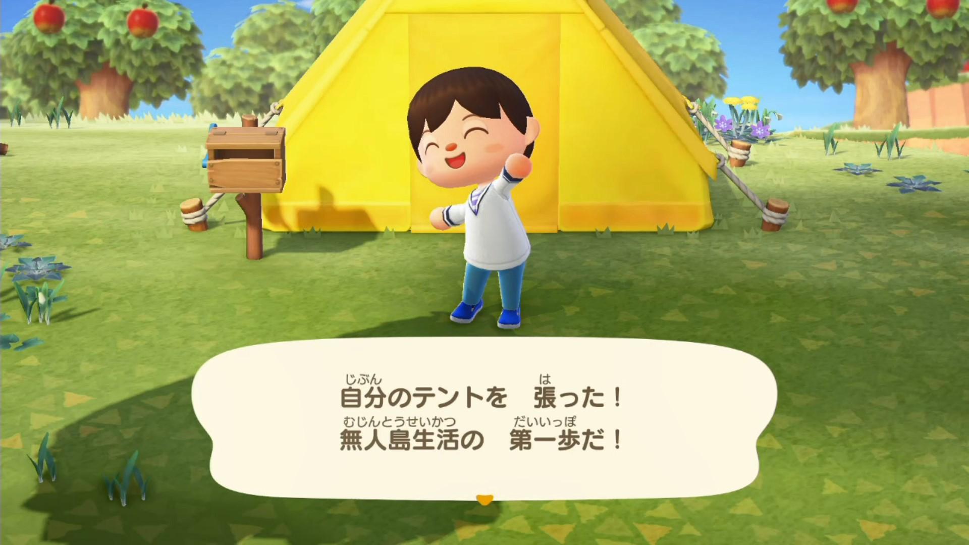 ついに自分のテントを張った!無人島生活の第一歩だ!